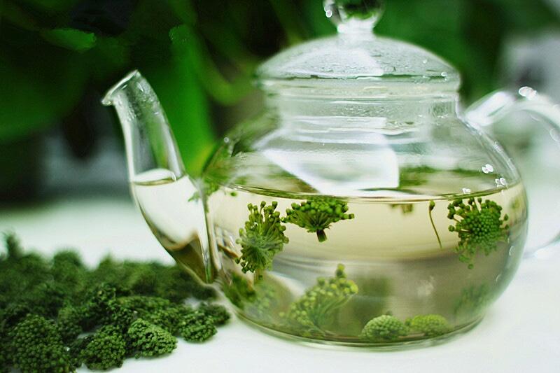 Huyết áp thấp nên hãm hoa tam thất với nước sôi uống thay nước lọc hàng ngày